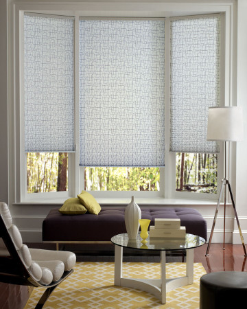Pleated Shades Honeycomb Shades